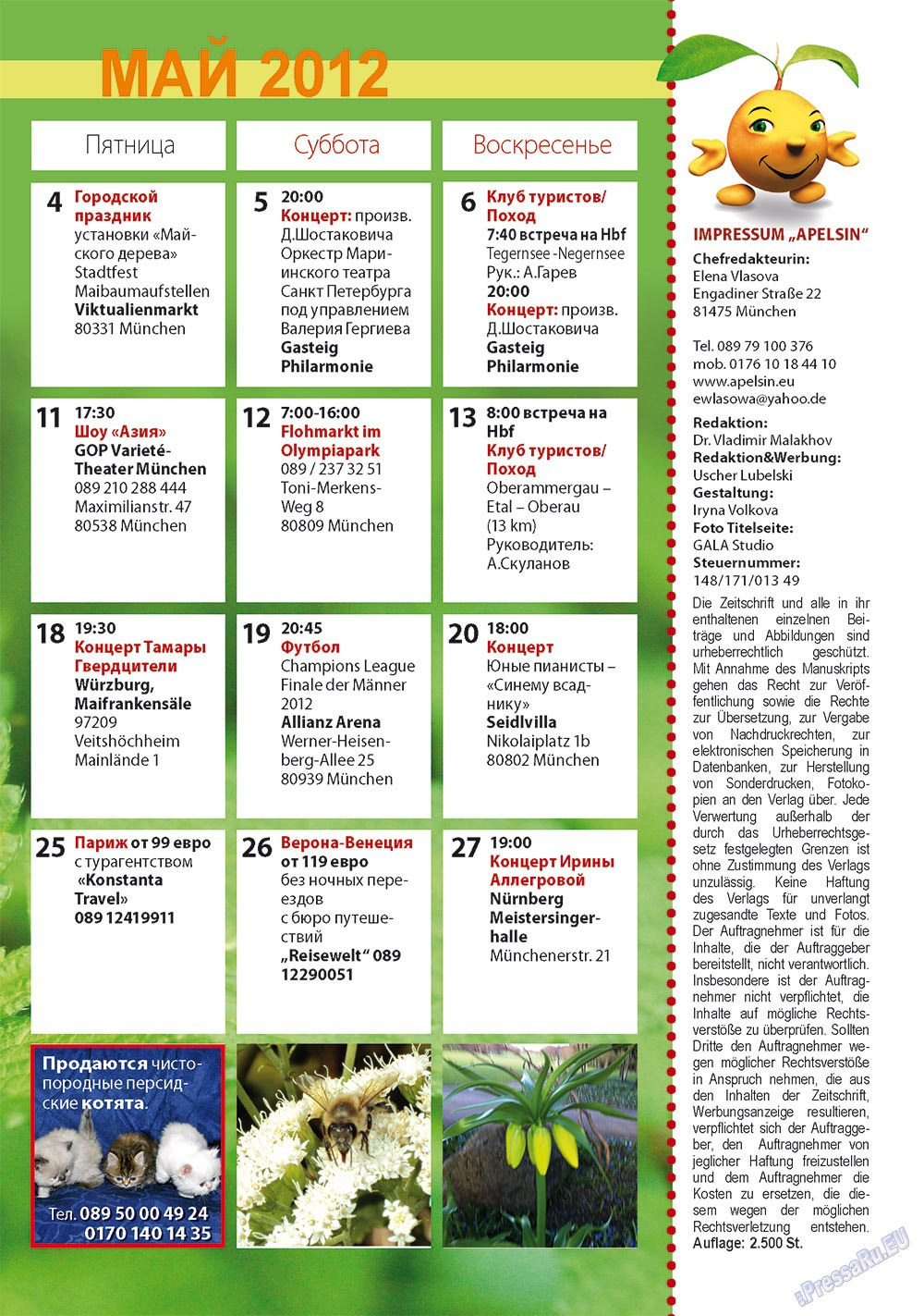 Апельсин (журнал). 2012 год, номер 34, стр. 27