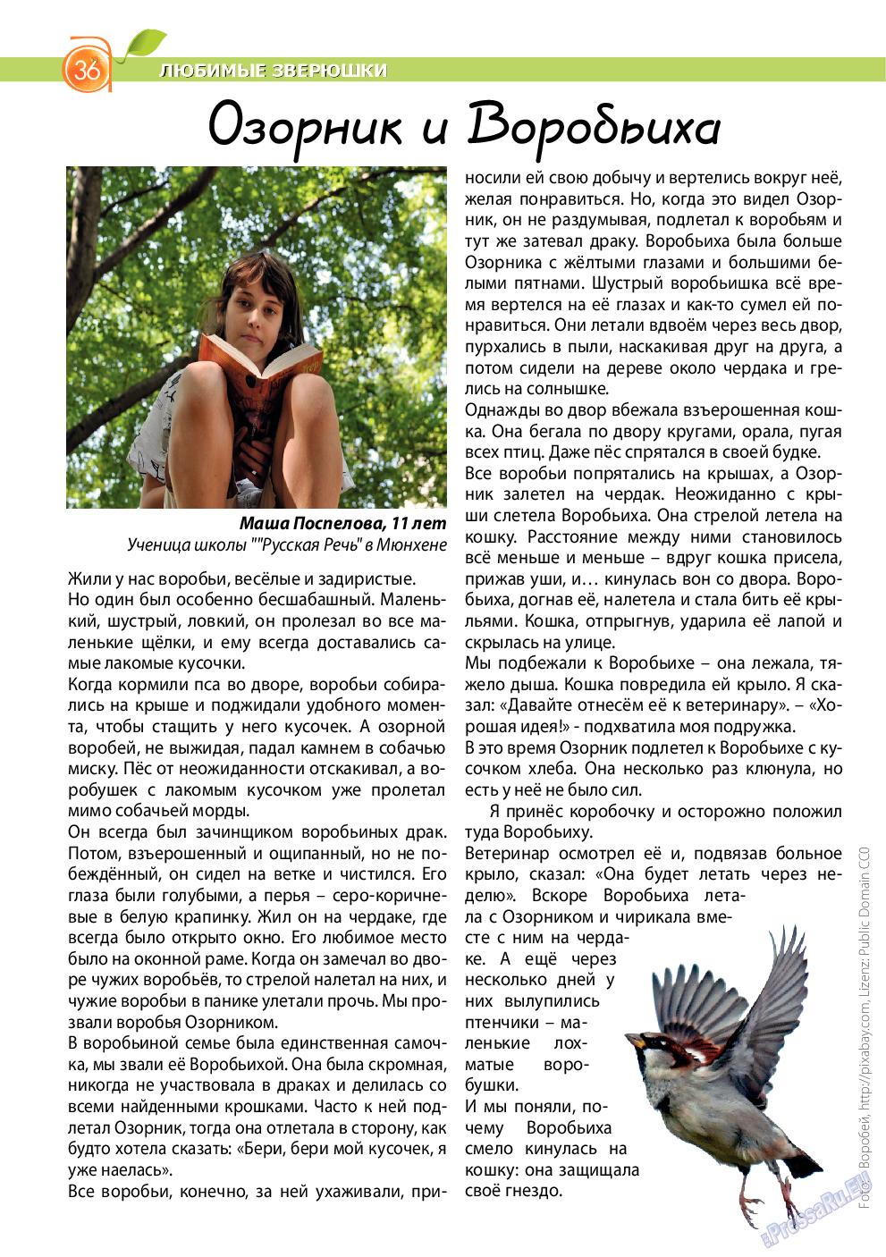 Апельсин (журнал). 2014 год, номер 62, стр. 36
