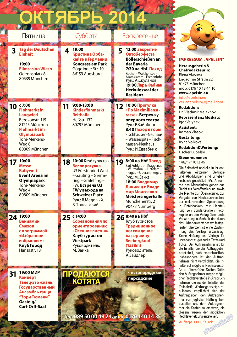 Апельсин (журнал). 2014 год, номер 63, стр. 29