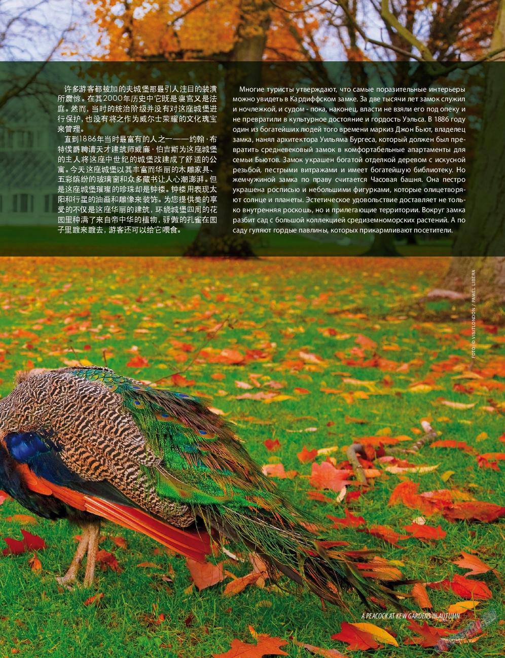 Клан (журнал). 2015 год, номер 9, стр. 97