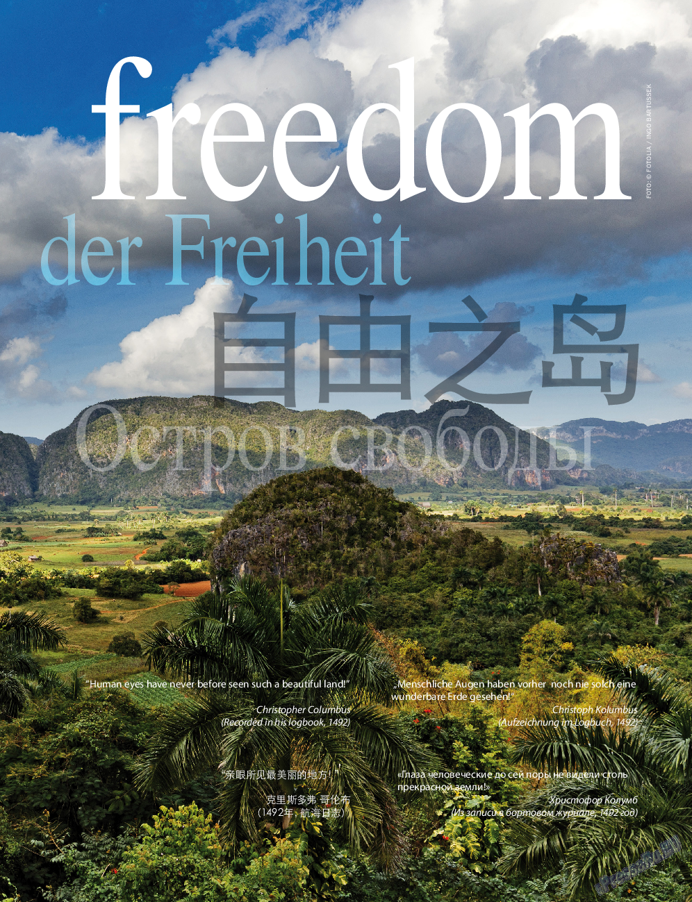 Клан (журнал). 2016 год, номер 10, стр. 11