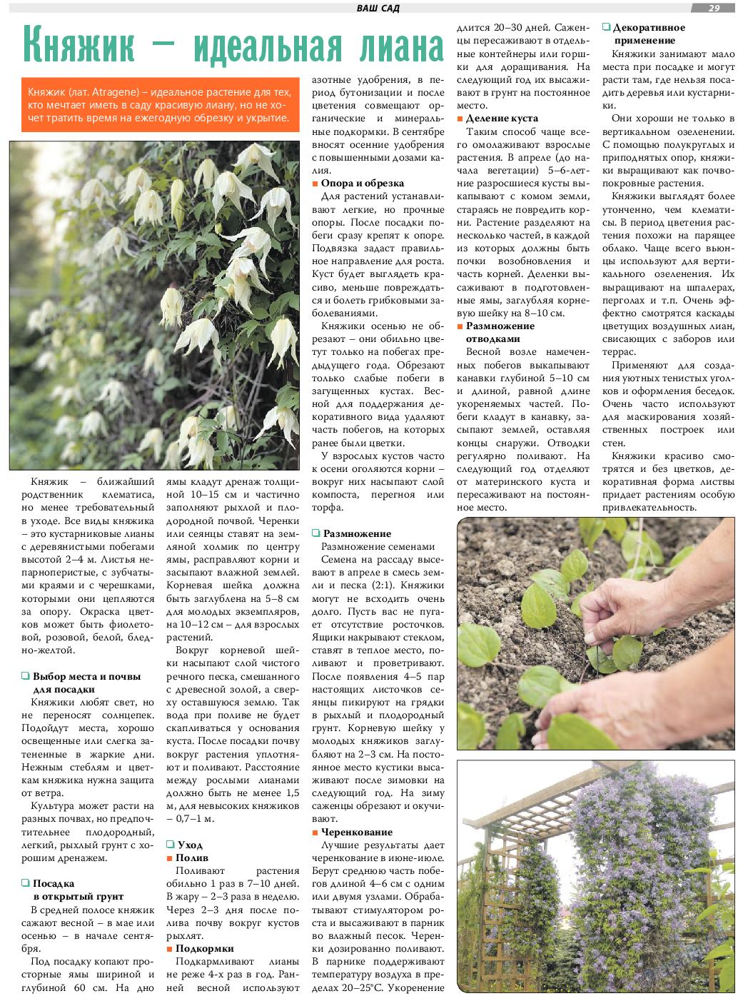 TVrus (газета). 2019 год, номер 30, стр. 29
